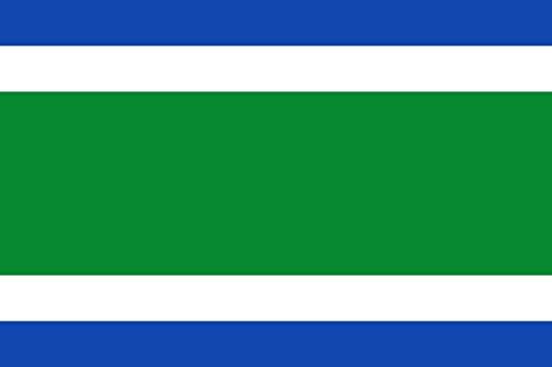 magFlags Bandera Large Municipio de Canalejas del Arroyo Castilla-La Mancha | Bandera Paisaje | 1.35m² | 90x150cm