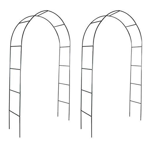 vidaXL Arco de jardín 2 Piezas Subiendo Las Plantas