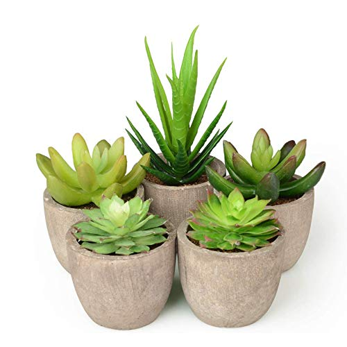 Abree Plantas Suculentas Artificiales 5PCS Jardinera Suculenta Falso Plantas de Cactus Faux Pequeñas con Macetas de Color Gris para la Decoración de la Oficina en el Hogar