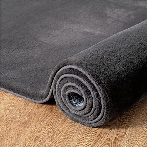 Bedsure Alfombra Recibidor Lavable Gris Oscuro - Alfombra Salón de Pelo Corto Suave Peluda, Alfombra Sala para casa, 140x200 cm