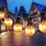 Luces Navidad Jardin Botanico