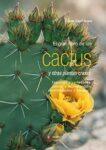 Cactus Grande Ikea