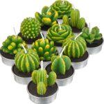 Cactus Regalo Boda