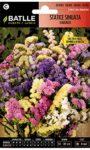 Siemprevivas Flores